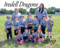 Iredell Dragons